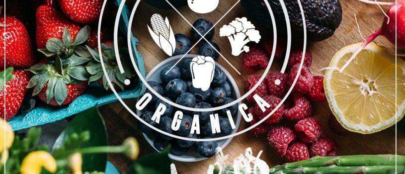 tu canasta organica